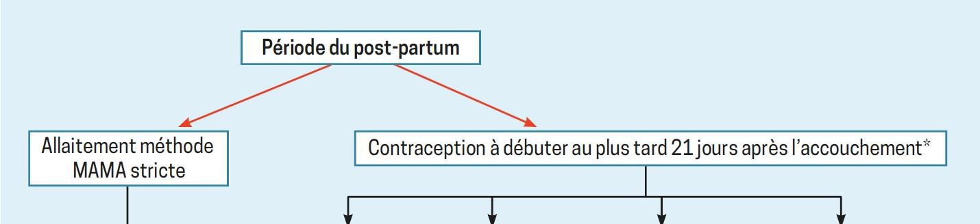 algo contraception